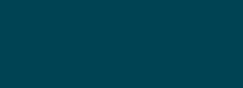 Logo_Camif_bleu